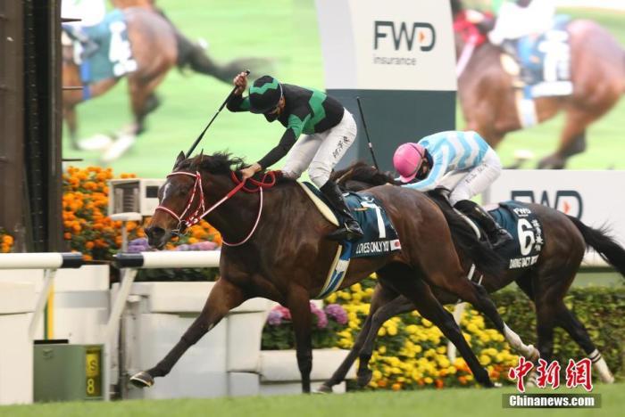 三场国际一级赛马在港举行 华人骑师一日两胜创历史